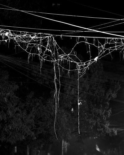 Sounak Das_Wire Formation_010